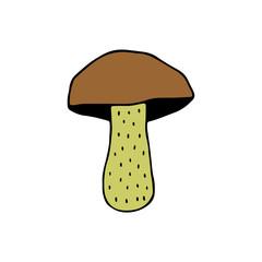 Cute cartoon hand drawn mushroom. Sweet vector colorful doodle mushroom. Isolated funny mushroom object on white background.