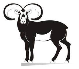 Ram original black on white illustration. Decor ram silhouette isolated on white illustration