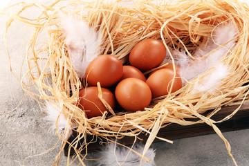 Egg. Fresh farm eggs on a wooden rustic background.