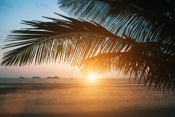 Sunset on the tropical sea beach with silhouette of palm leaves.