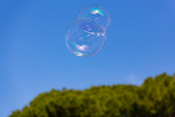 soap bubbles sticking together flying in blue sky over green trees in the background