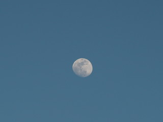 moon in waxing gibbous phase at the end of February at dusk