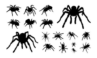 Set of Various tarantula silhouette vector illustration