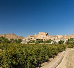 A Fort in Furg, Khorasan, Iran