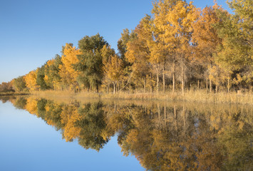 The colorful autumn in Gansu of China