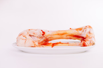 on a white background a plate with a bone lies
