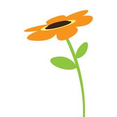 Cute sunflower icon
