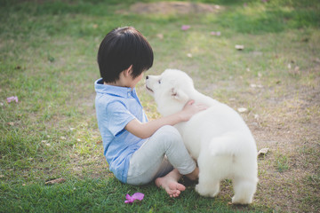 child playing with siberian husky puppy in the park