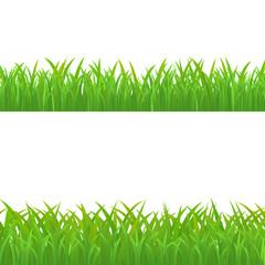 Green Grass Set, Vector Illustration