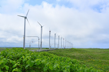 風力発電 サロベツ原野