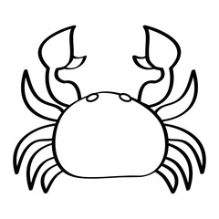 sea wild life crab marine animal image vector illustration outline design