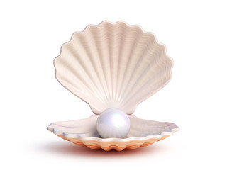 Pearl inside seashell isolated on white background 3d rendering