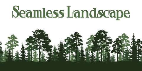 Seamless Horizontal Summer Forest with Pine and Fir Trees Green Silhouettes on White Background. Vector