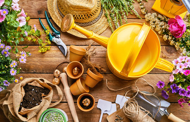 Garden tools and plants for potting into pots