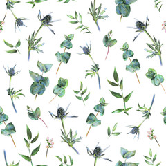 Seamless floral pattern with green eucalyptus, feverweeds and leaves of ruscus on white. Spring plants. Botanical natural background drawn by hand with colored pencil