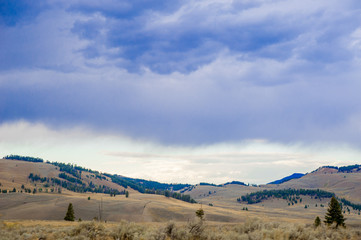 Landscape of Yellow Stone National Park, America