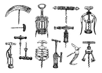 Big set of corkscrew. Vector hand drawn sketch of corkscrew set. Corkscrew on a white background. Illustration, sketch in ink hand drawn style