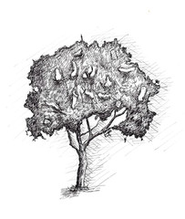 graphic tree, raster, pencil