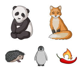 Fox, panda, hedgehog, penguin and other animals.Animals set collection icons in cartoon style vector symbol stock illustration web.