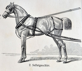 Vintage illustration - HORSE HARNESS. Meyers Kleines Lexikon. Edition 1908.