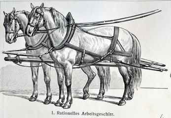 Vintage illustration - HORSE HARNESS. Meyers Kleines Lexikon. Edition 1908.