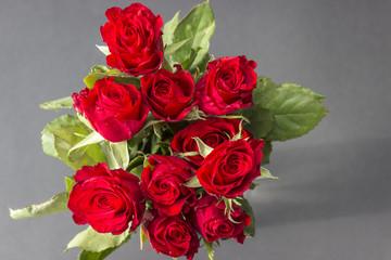 Obraz Bukiet czerwonych róż - fototapety do salonu