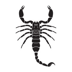 Scorpion icon. Vector realistic scorpion.