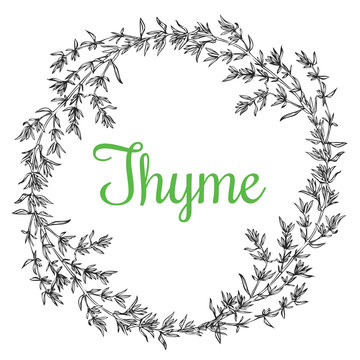 thyme plant wrench