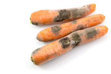 Black mold fungus in carrot Isolated on white background.