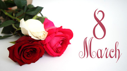 """greeting card, White rose, red rose, pink rose on the isolated white background the inscription """"March 8"""""""
