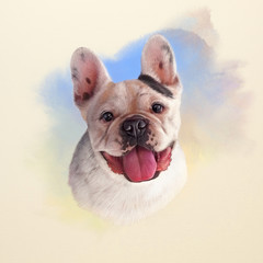 Illustration of French Bulldog. Dog is man's best friend. Watercolor Animal collection: Dogs. Watercolor Dog Pug Portrait - Hand Painted Illustration of Pets. Good for banner, print T-shirt, card.