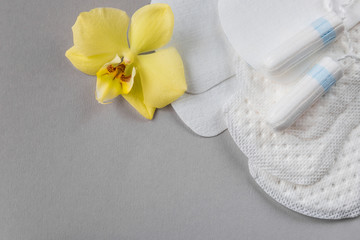 Means of protection of female hygiene. Hygienic tampons and pads on a gray background. Organic gaskets made of bio-cotton. Menstrual cycle.