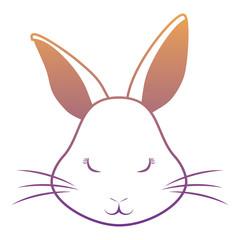 Cute rabbit icon