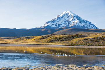 Sajama volcano and lake Huaynacota. Andean Bolivia