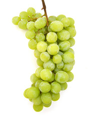 Fresh green grapes. Isolated on white
