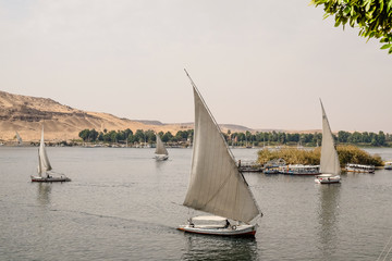 Felucca boats sailing on the Nile in Egypt