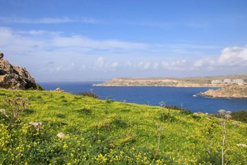 Gnejna Bay, Wandern, Malta, Westküste, Frühling