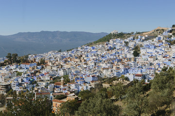View of houses on mountain against blue sky