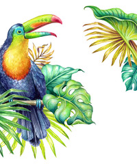 watercolor botanical illustration, hand painted toucan in the jungle, green palm leaves, paradise bird, tropical nature, isolated on white background