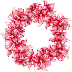 amaryllis flowers wreath