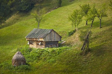 Old rustic wooden barn on green meadow in Rucar-Bran pass, Brasov county, Transylvania region, Romania. Springtime countryside scenery.