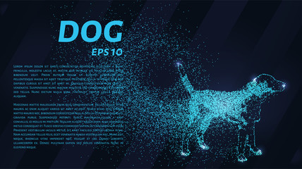 Dog of the particles. The dog consists of small circles and dots. Vector illustration