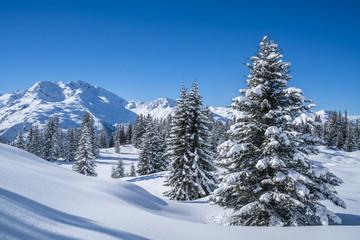 Fototapete - Winterpanorama - Verschneite Winterlandschaft
