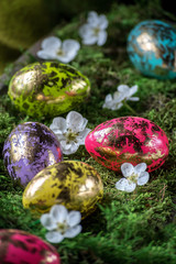 gold leaf on colorful Easter eggs with spring flowers on moss nest