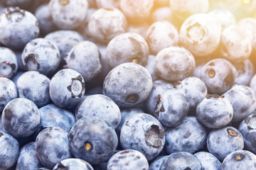 Close-up fresh blueberries. Natural berries background. Fresh natural organic food background
