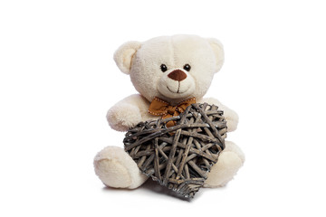 Isolated teddy bear