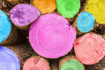 Gefällte Baumstämme - Bemalt und Gestapelt, wartend zur Abholung durch die Holzindustrie