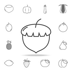 Acorn icon. Set of fruits and vegetables icon. Premium quality graphic design. Signs, outline symbols collection, simple thin line icon for websites, web design, mobile app