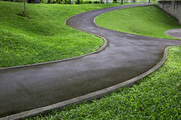 pathway in the grass garden ,grass,outdoor,green grass, landscape, moisture, fit exercise,nature, morning walk