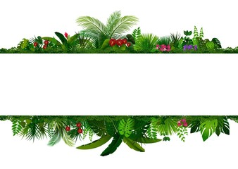 Tropical leaves background. Rectangle plant frame with space for text. Tropical foliage with horizontal banner